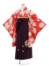 小学校卒業式袴レンタル(女の子)9651赤地薬玉×パープル丸桜袴