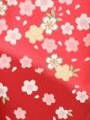 卒業袴レンタル A109赤