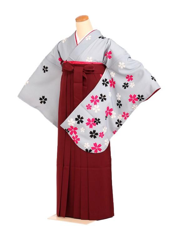 女袴s005グレー地に桜/エンジ無地