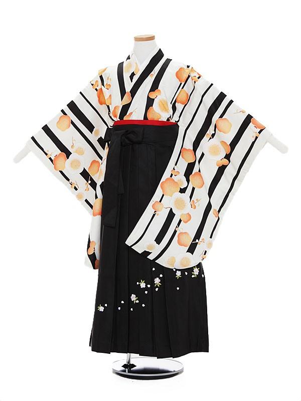 小学生卒業式袴レンタル(女の子)A034 白地 ストライプ 梅×黒袴