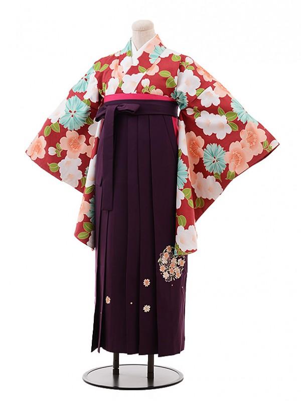 卒業袴レンタル h148 エンジ地 花×パープル袴