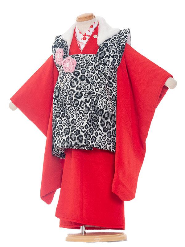 七五三レンタル(3歳女の子被布)3265 ヒョウ柄×赤