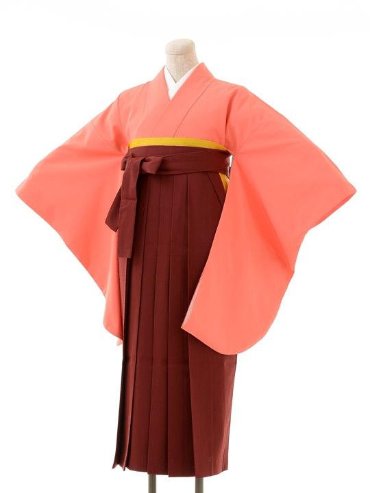 先生,教員向け袴レンタルs149/卒園式,卒業式