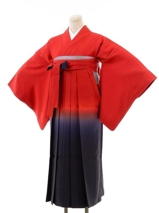 先生,教員向け袴レンタルs138/卒園式,卒業式