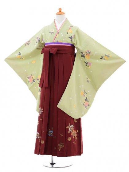小学生卒業式袴(女の子)レンタルB071グリー