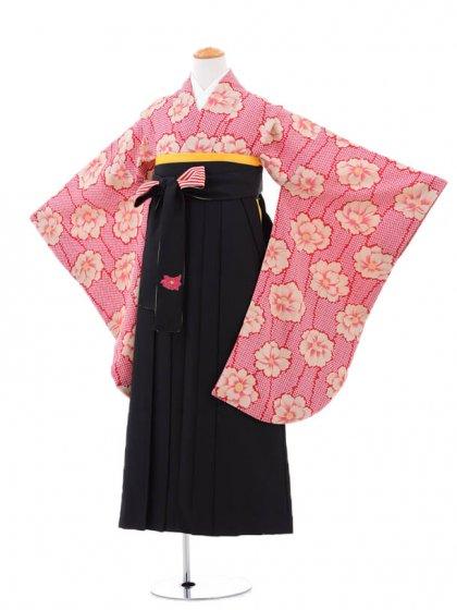小学生卒業式袴女児0951赤牡丹×黒袴