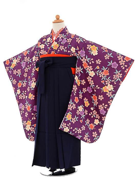 七五三(7歳女袴)女児袴sfts019紫小紋花/紺