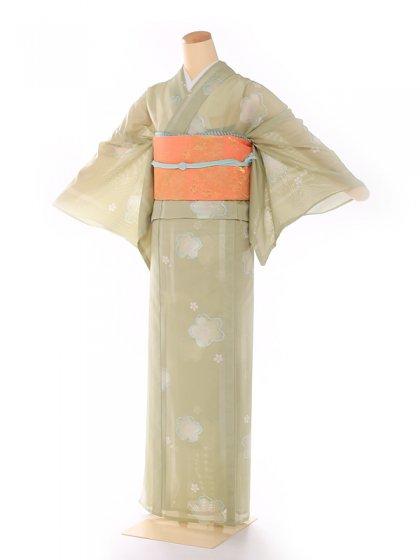 絽 黄緑 小紋桜 8104