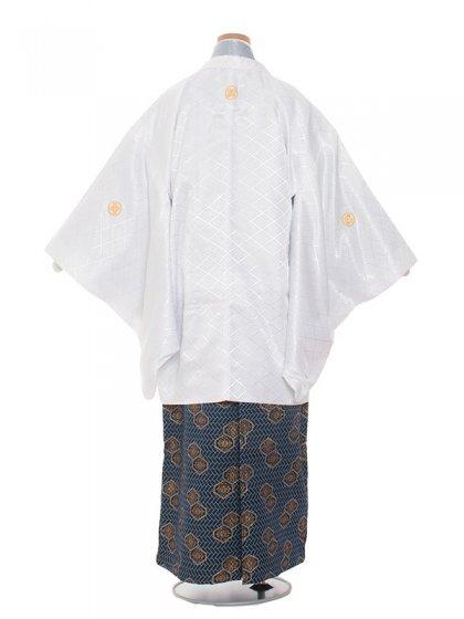 ジュニア(13男)jr1337白×アイスグレー/袴