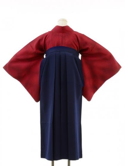 先生,教員向け袴レンタルs116/卒園式,卒業式