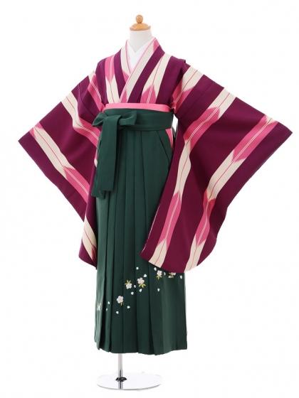 小学生卒業式袴女児9311 紫ピンク矢絣×グリーン