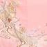 色留袖レンタル553珊瑚色