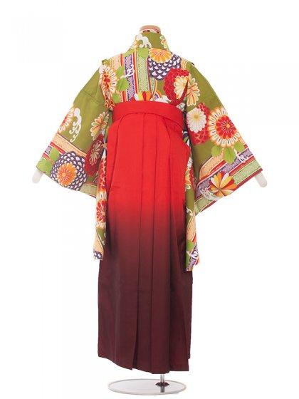 ジュニア(13女)1353 黄緑レトロ/袴85