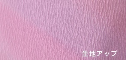 色無地レンタル 6・9月に ADDT076[単衣]