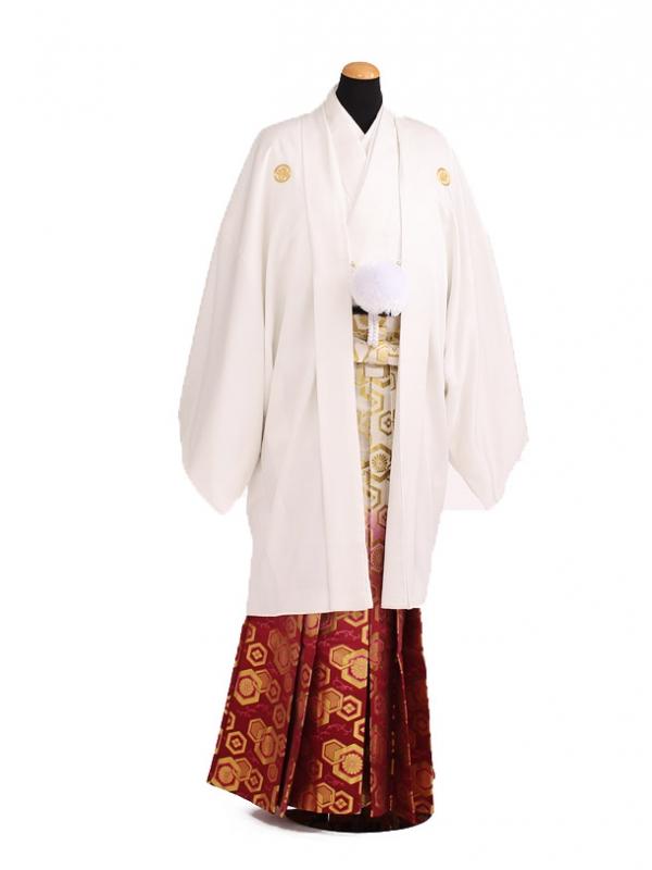 卒業式成人式袴レンタル200白紋付×赤ぼかし袴