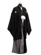 卒業式成人式袴レンタル138*5正絹黒紋付/黒銀縞