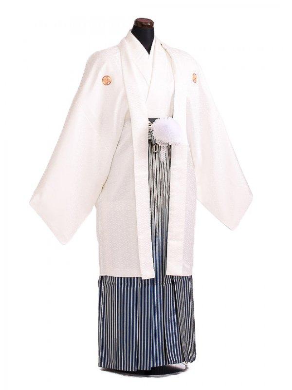 卒業式成人式袴男レンタル097*5白風林火山/銀紺