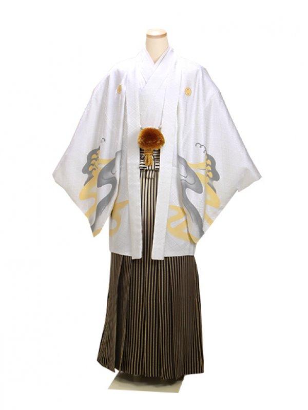 男紋付袴 卒業式 成人式 白虎 LLサイズ