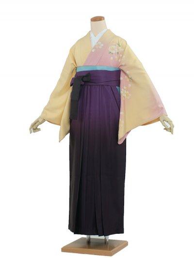 卒業袴レンタル(8196)クリームイエロー/紫袴95