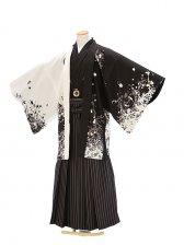 紋付0042ジャパンスタイル墨字の鯉柄白