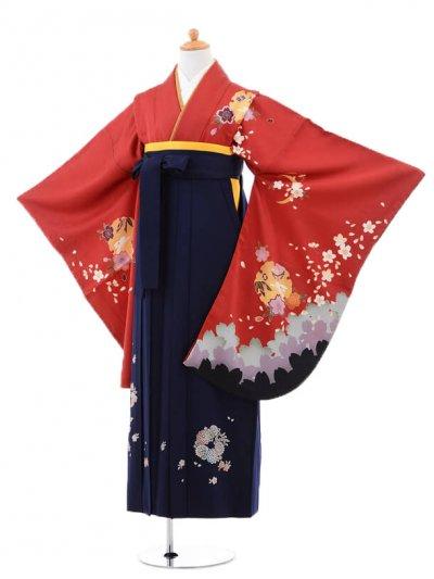 小学生卒業式袴(女の子)レンタルB073赤雪