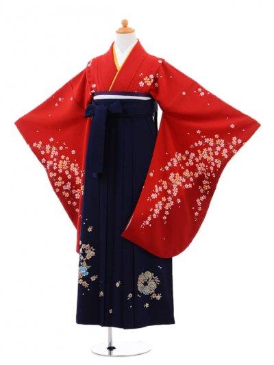 小学生卒業式袴(女の子)レンタルB035赤地