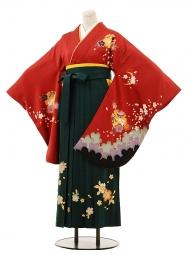 小学生卒業式袴女児B083赤雪輪にうさぎ×グ