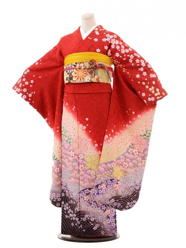 振袖E068 赤桜吹雪