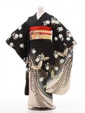 振袖A049 黒地桜と蝶