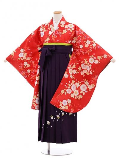 小学生卒業式袴レンタル(女の子)9662赤地桜×パープル袴