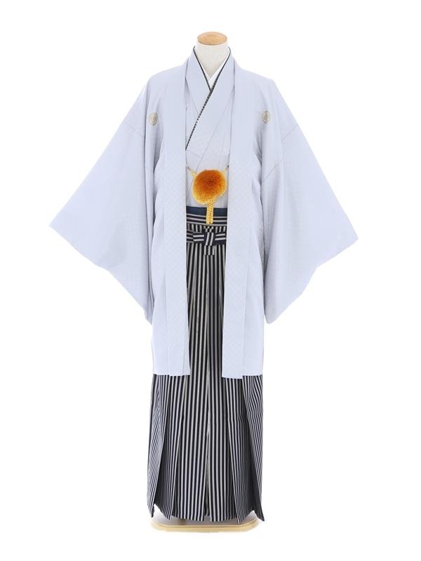紋付袴171/グレー/紺シルバーストライプ