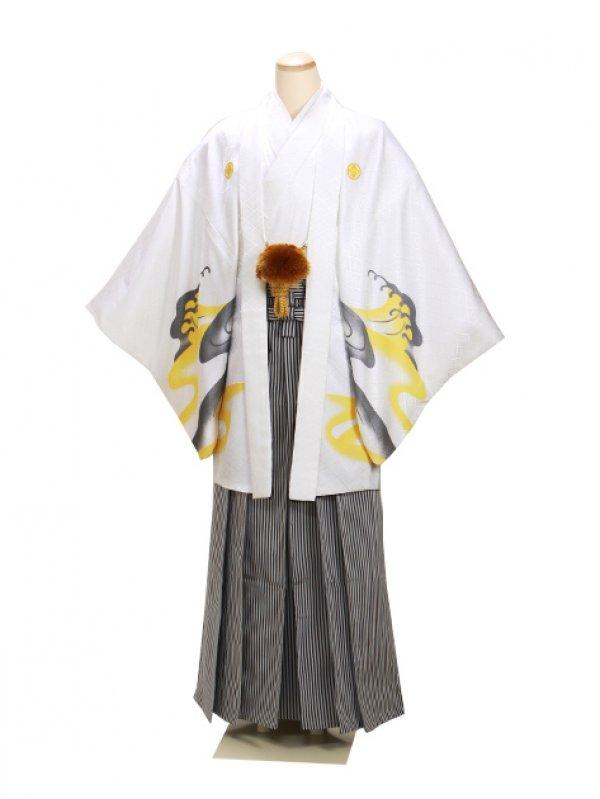 男紋付袴 卒業式 成人式 白虎 Lサイズ