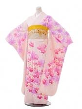 振袖F017うすピンク地桜