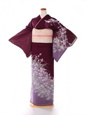 絽 訪問着 紫 四季の花 kt5067