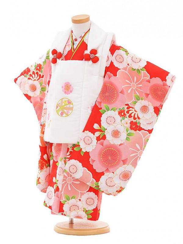七五三レンタル(3歳女被布)A314 白まり×赤桜