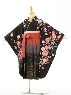 女児袴(5女)0601 黒地花まり×赤茶