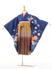 ジュニア着物(女の子袴)0610紺地桜×キャメル色ぼ