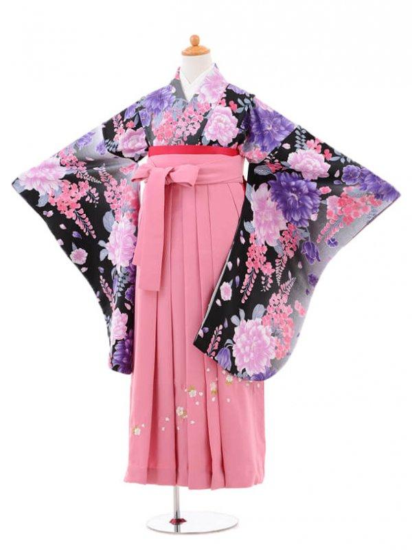 小学生卒業式袴女児jh0961黒ぼたんと藤×袴