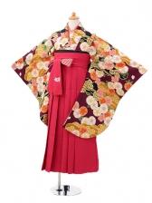 小学生卒業式袴(女の子)レンタルjh0930紫