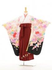 ジュニア着物(女の子袴)0771チャイルドール白×あず