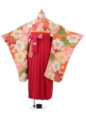 小学生卒業式袴(女の子)レンタルjh0926オレ