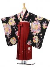 ジュニア(女の子袴)レンタル0790黒地花玉