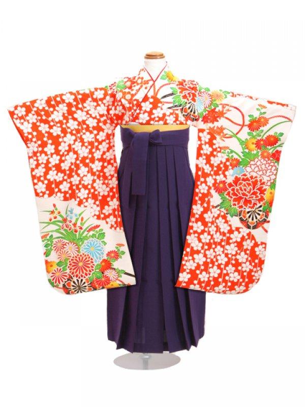 七五三 袴 5~7歳女児 マ 卒園式 入学式