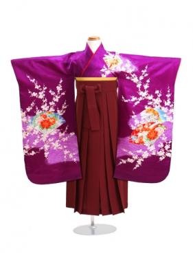 七五三 袴 5~7歳女児 サ 卒園式 入学式
