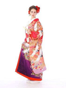 色打掛レンタル6F001ピンク/紫ボカシ飛鶴
