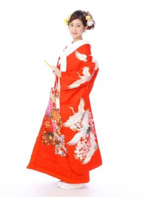 色打掛レンタル6F018赤地花車に鶴四季の花ばな