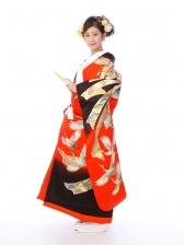 色打掛レンタル6F016赤/黒地 慶長のしめ鶴