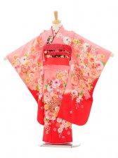 七五三(7歳女結び帯)7154 ピンク赤ぼかし花ま