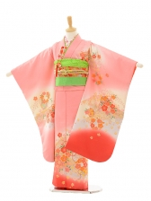 七五三(7歳女結び帯)7239 ピンクぼかし 梅桜