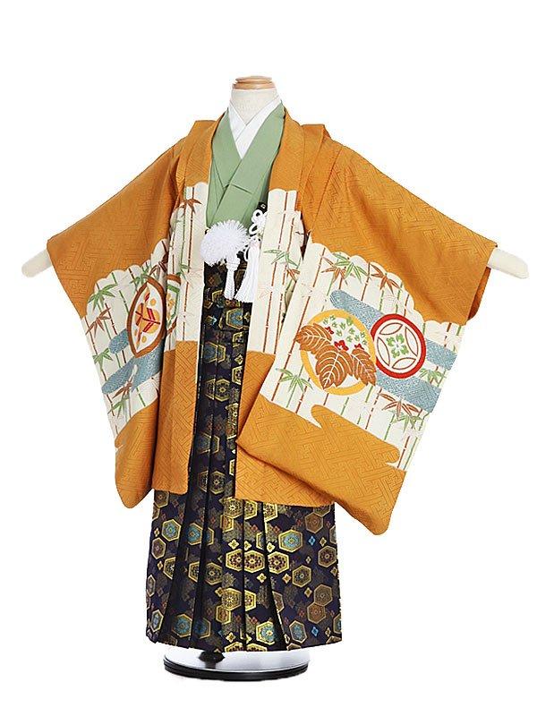 753レンタル(5歳男)5141金茶地・丸・ワシ